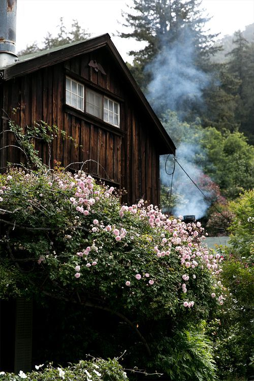 The Ultimate Guide To Exploring Big Sur The Edit Big Sur Cool Places To Visit Cabins In The Woods