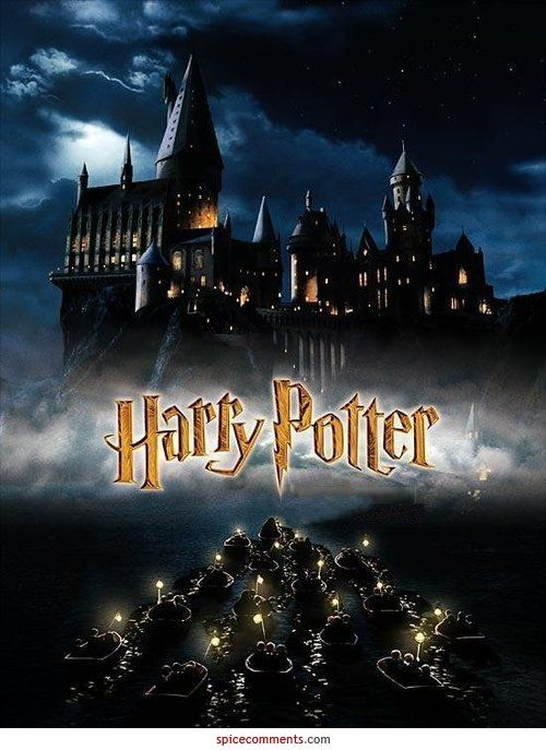 Loved All The Movies In This Series Harry Potter Poster Harry Potter Film Stein Der Weisen