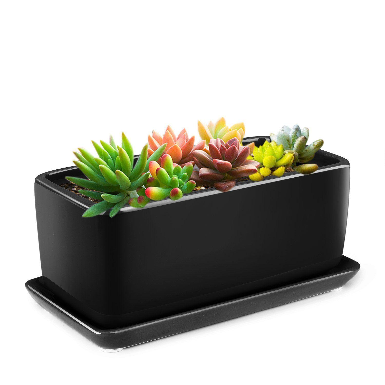 Flexzion 10 Inch Rectangular Ceramic Succulent Planter Pot