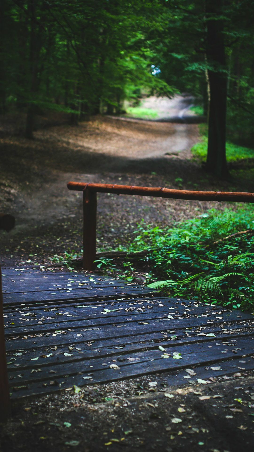 Wood Nature Forest Road Mountain Dark Summer IPhone 7 Wallpaper