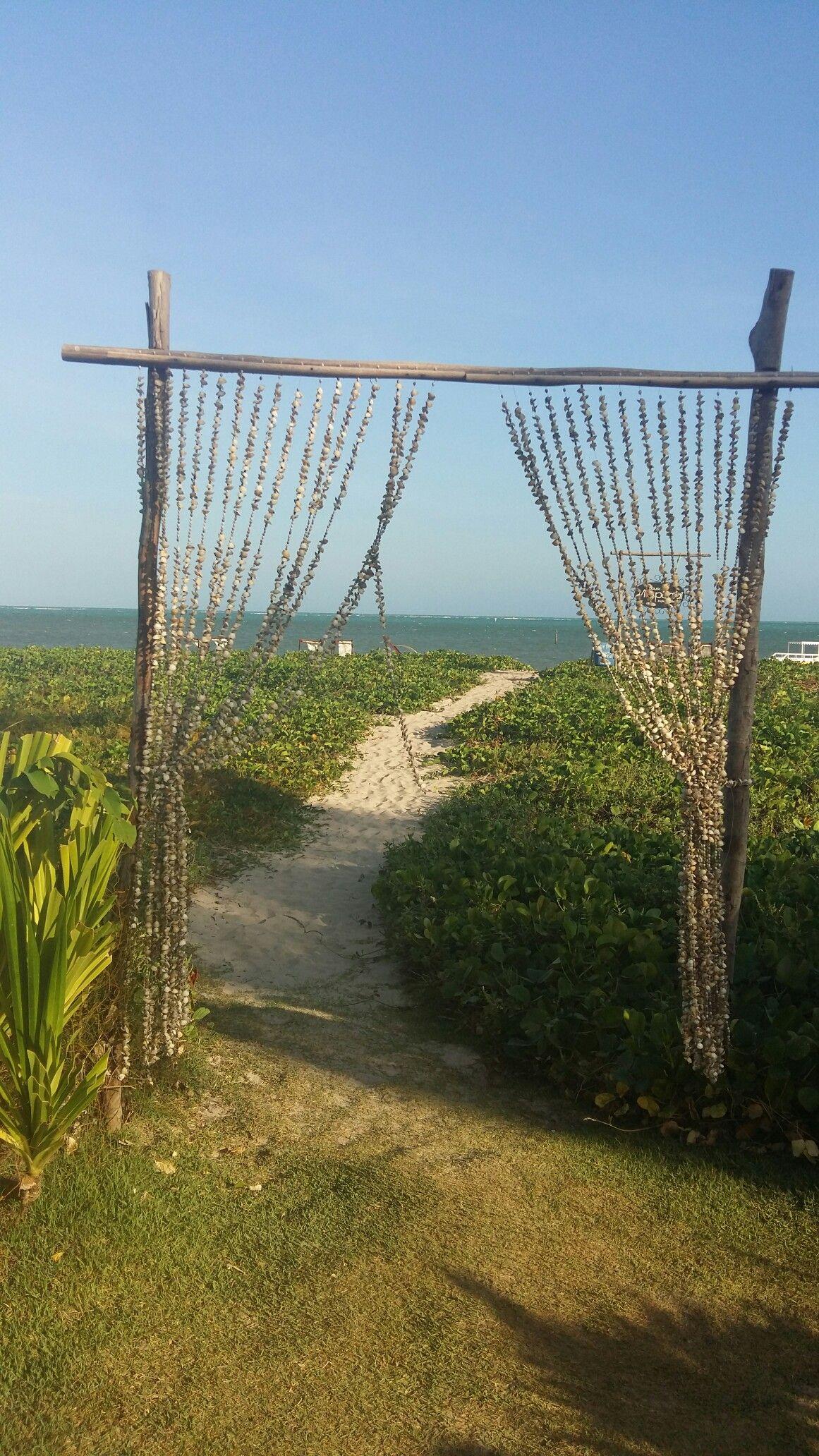 Praia de São Miguel dos Milagres  Alagoas Brasil