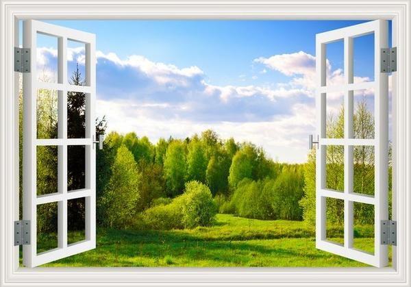 Amazing 3D Forrest Decals Landscape wallpaper, Window