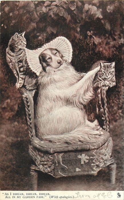 AS I DREAM, DREAM, DREAM, ALL IN MY GARDEN FAIR. (WITH APOLOGIES) - Vintage postcard, 1903