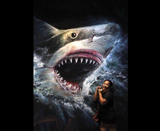 Interagire con l'arte: i quadri tridimensionali