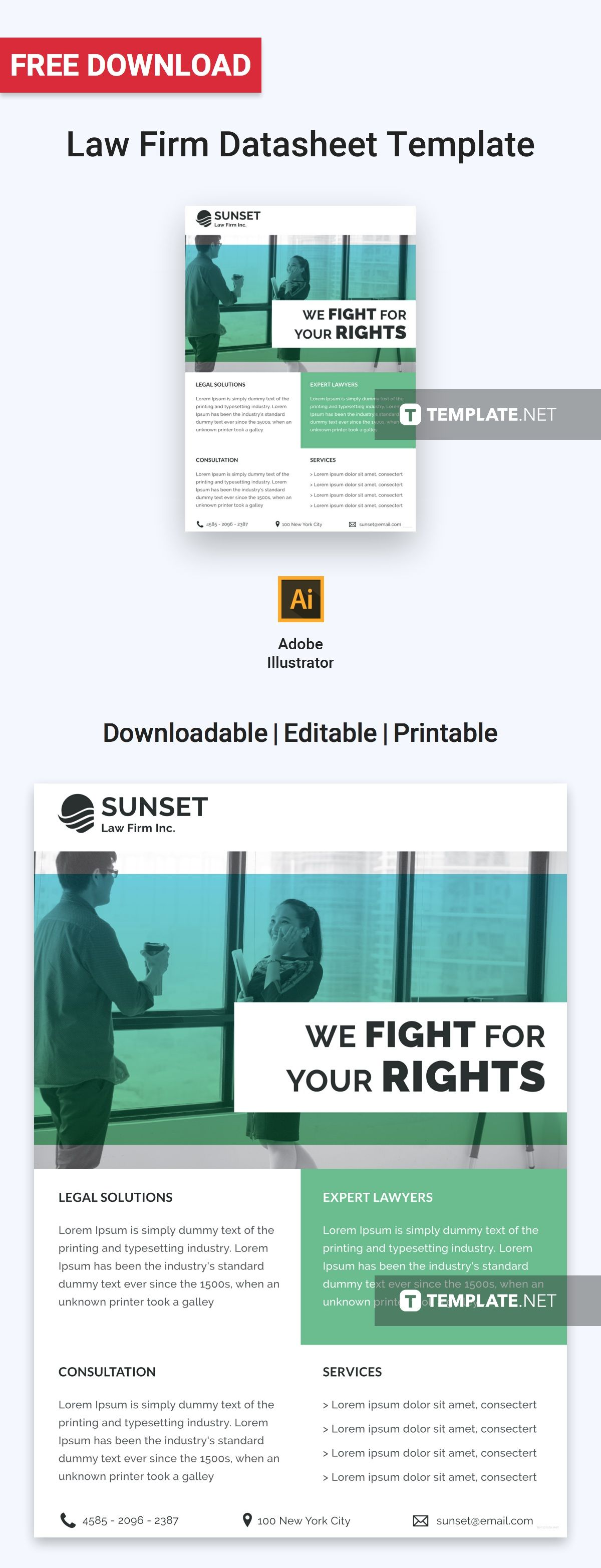 Law Firm Datasheet Template Word Psd Apple Pages Illustrator Publisher Law Firm Templates Microsoft Publisher Microsoft publisher templates free downloads