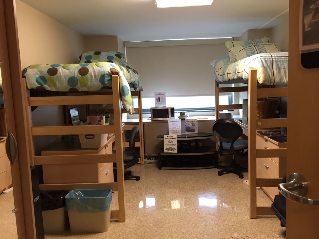 Ball State Dorm With Images College Room Dorm Room Dorm