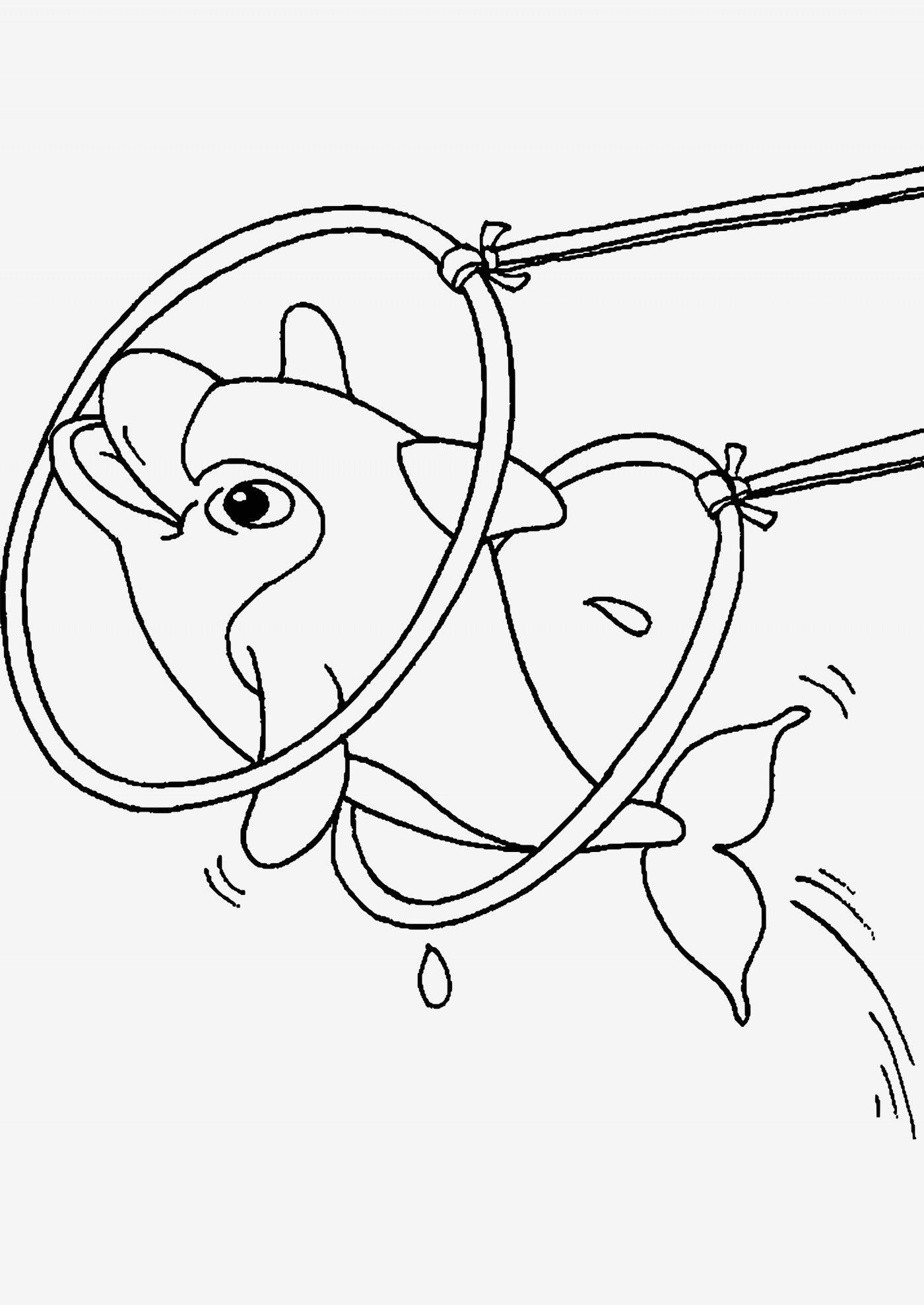 einzigartig ausmalbild delfine | ausmalbilder, ausmalen