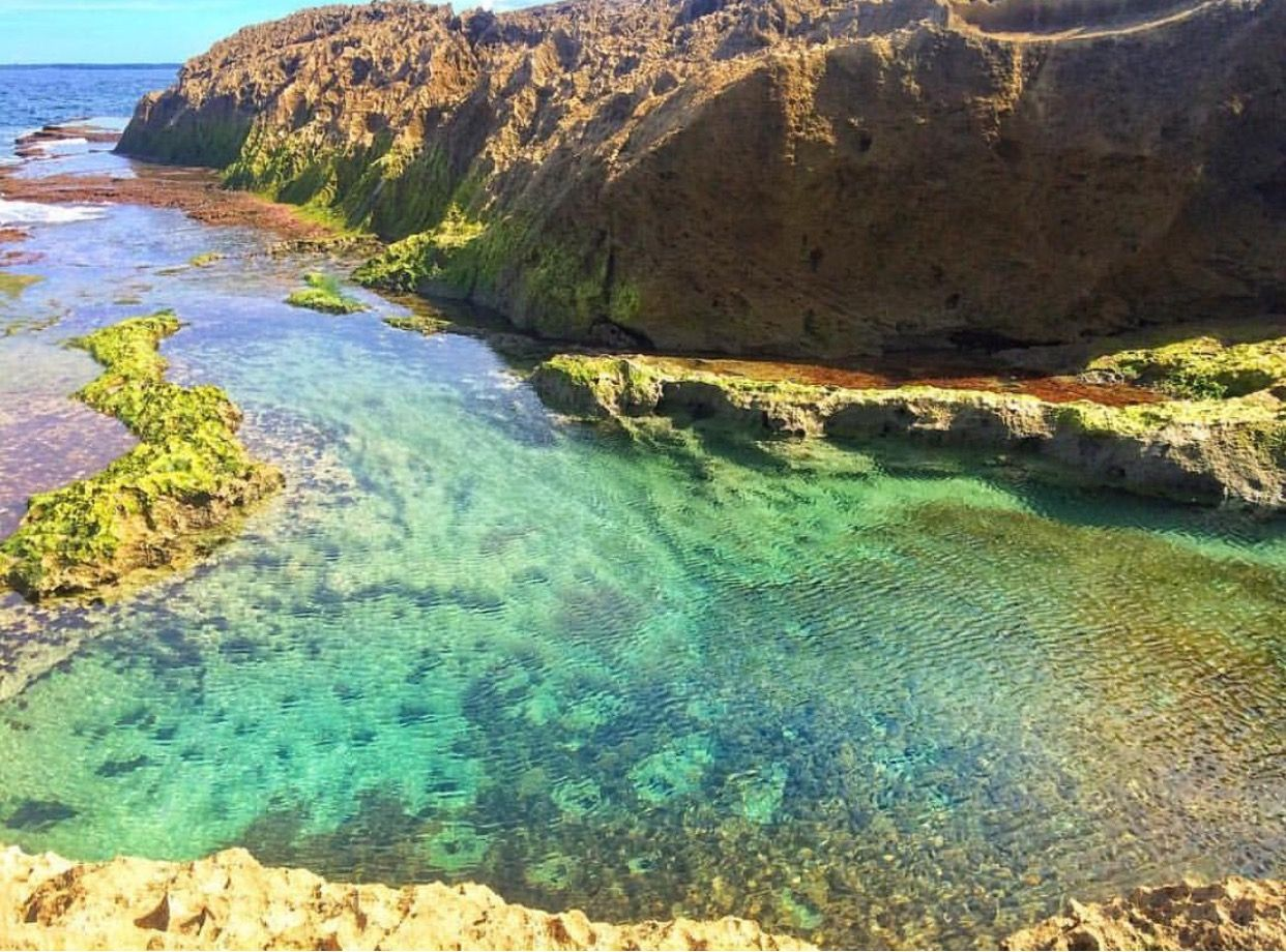 Piscinas Naturales de Manatí, Puerto Rico    Natural Pool of Manatí, PR [ Instagram: @backpackingpr ]