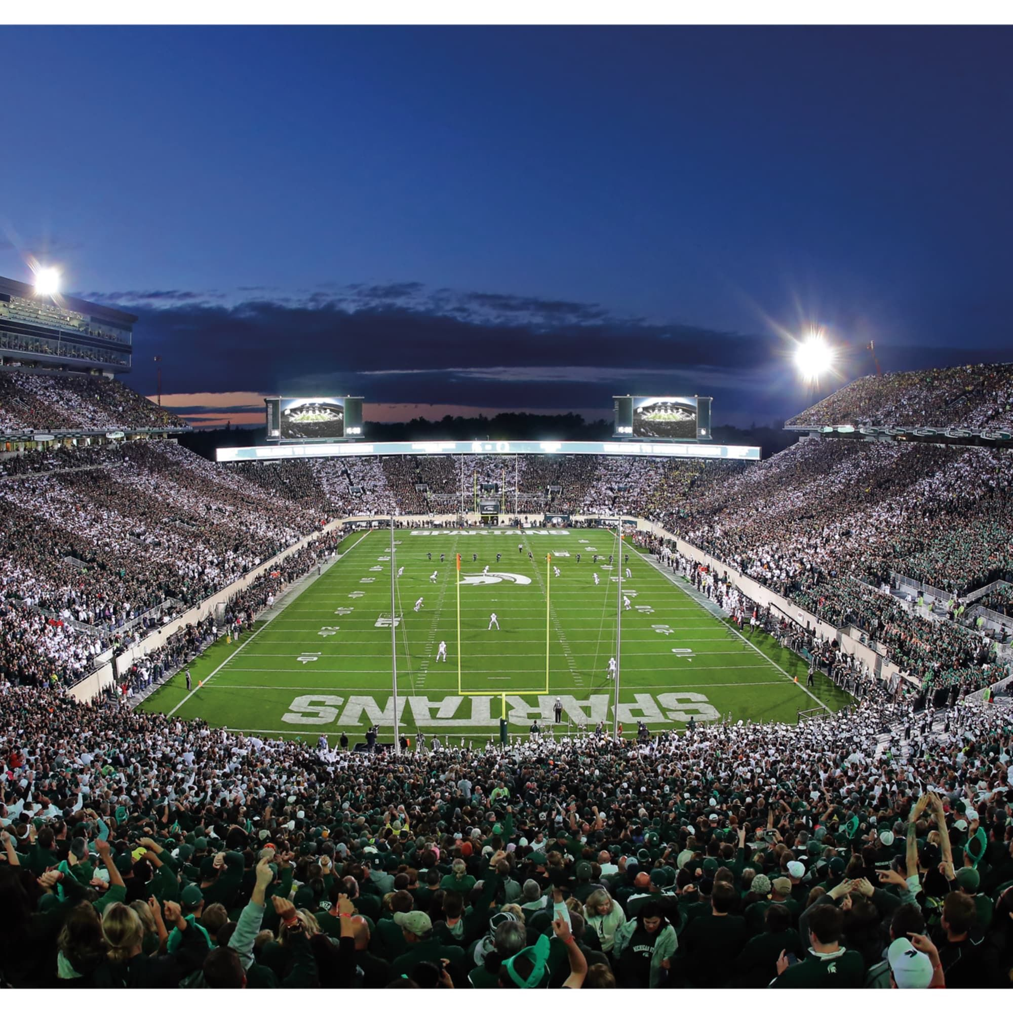 Michigan State Spartans Spartan Stadium Endzone Mural Giant Officially Licensed Removable Wall In 2020 Michigan State Stadium Michigan State Michigan State Spartans