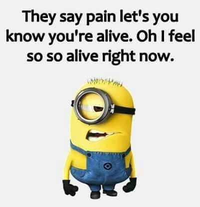 fdb4e9d476c2b17b56722d1e030b234c minions back pain meme funny things pinterest humor, funny