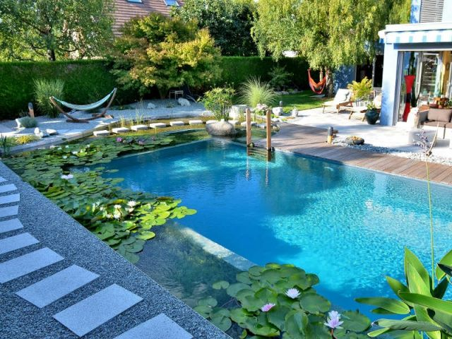 Avant apr s une piscine traditionnelle transform e en for Bassin piscine naturelle