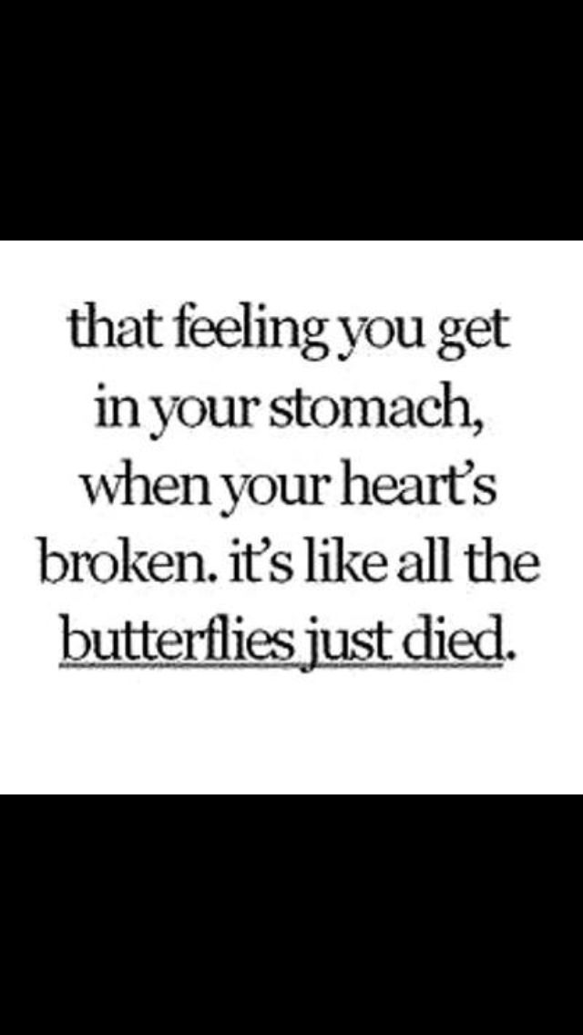 When the butterflies die ; relationship quote