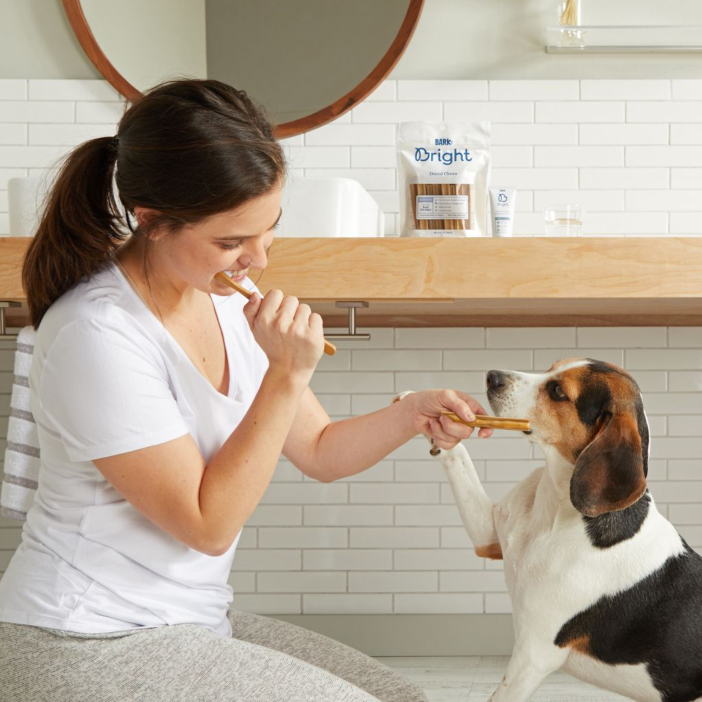Brushing your dogs teeth just got easier thanks to this