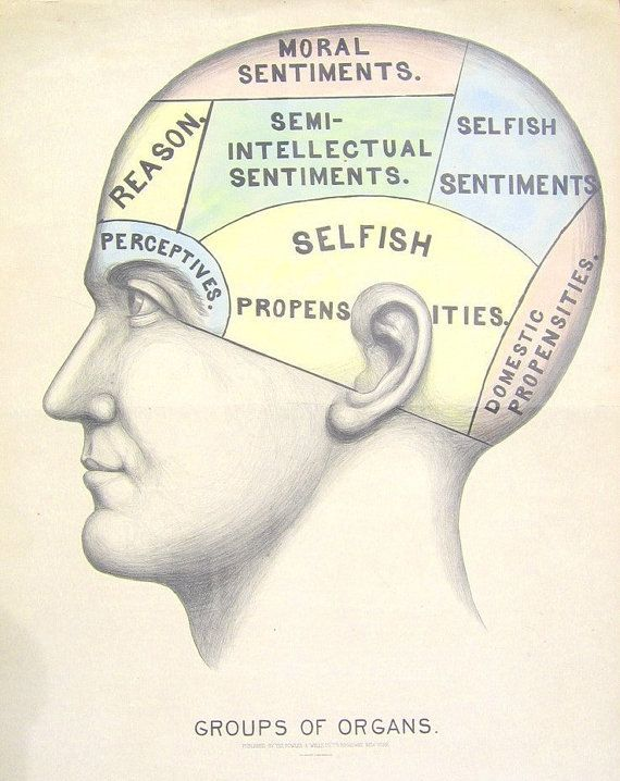 Vintage Surreal Print Phrenology Chart Antique Medical Ilration