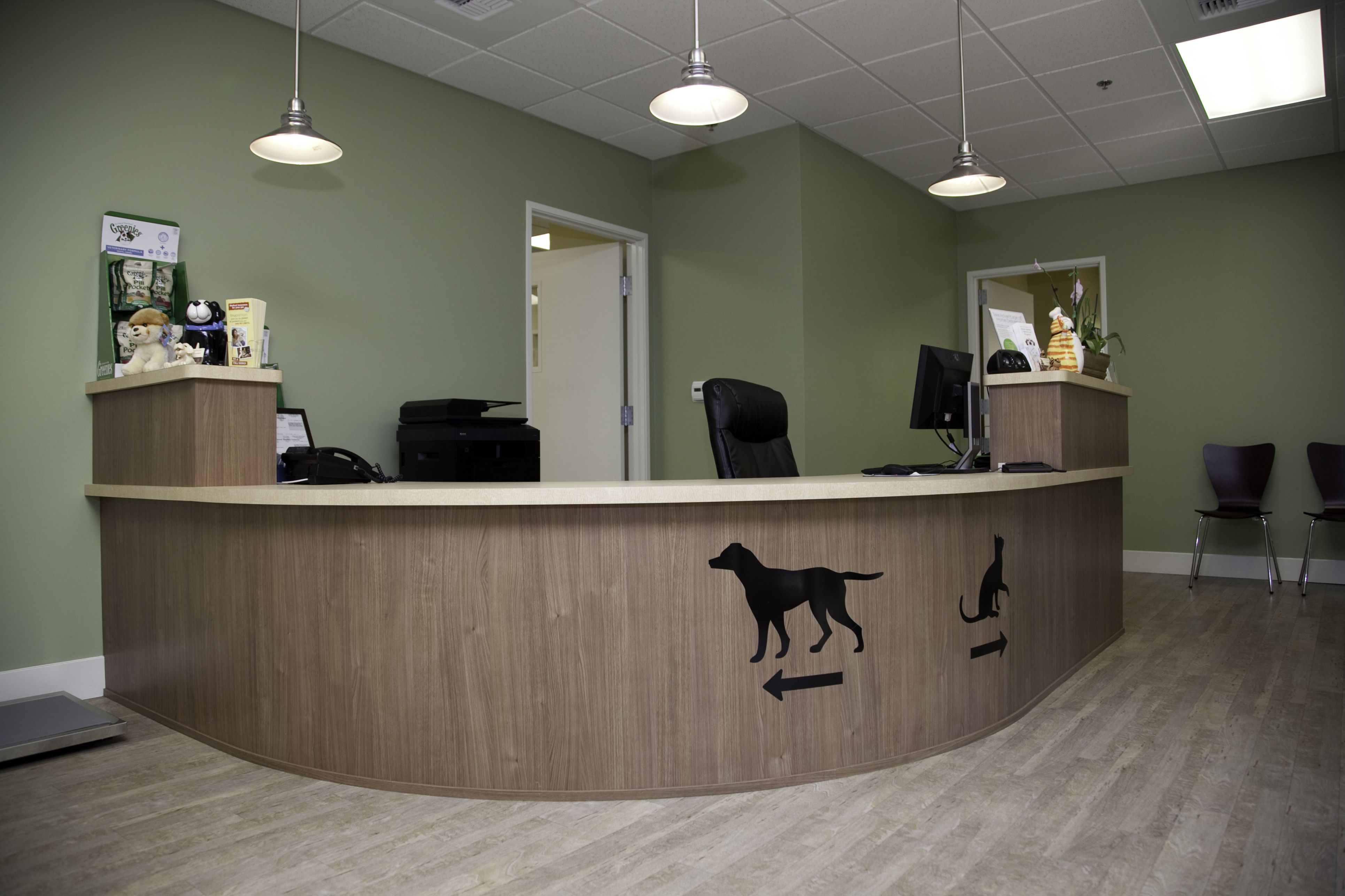 Theater View Veterinary Clinic Decoracion Veterinaria Diseno De