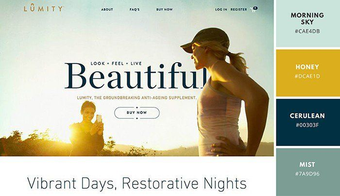 Website Color Schemes The Palettes Of 50 Visually Impactful