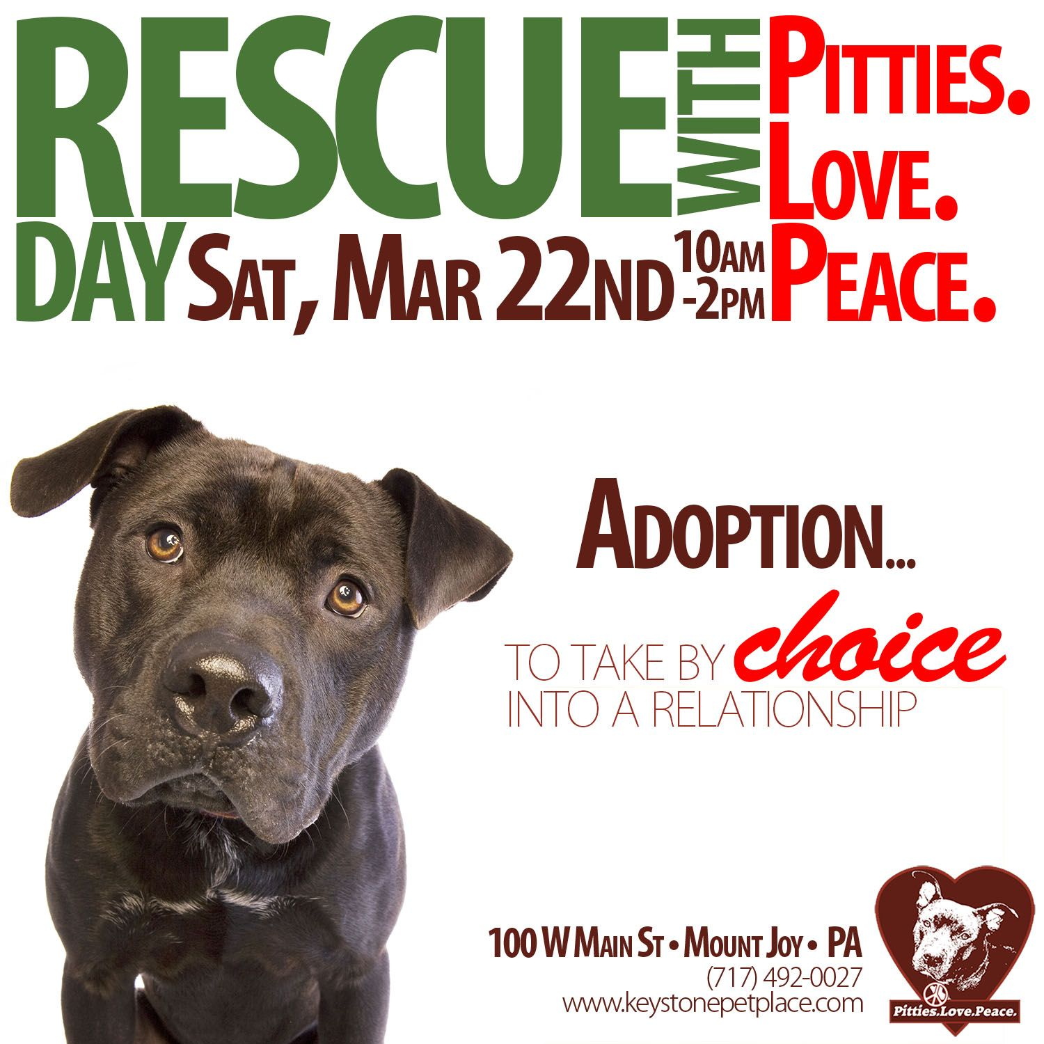 Pitties Love Peace A Local Pitbull Rescue Organization Is Coming To Keystone Pet Place Here In Mount Joy Pa On Saturday March 2 Mount Joy Special Events Adoption