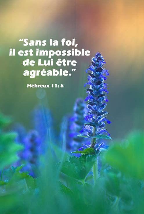 Je T Aime En Hebreu : hebreu, Hébreux, Bible,, Citations, Bibliques, Bible, Francais