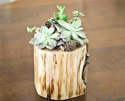 mini branch pots - Google Search