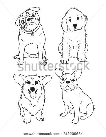 Vector handdrawn pen corgi, pug, french bulldog, retriever, labrador ...