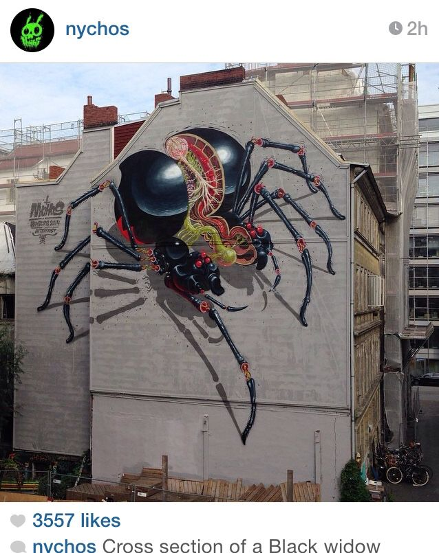 New Nychos cross-section of a black widow.  #streetart #graffiti