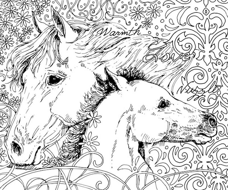 Mama Horse Coloring Canvas Coloring Canvas Horse Coloring Books Book Wall Art