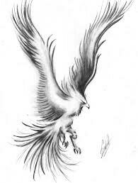 Ave Fenix Dibujos A Lapiz Tattoo Pinterest