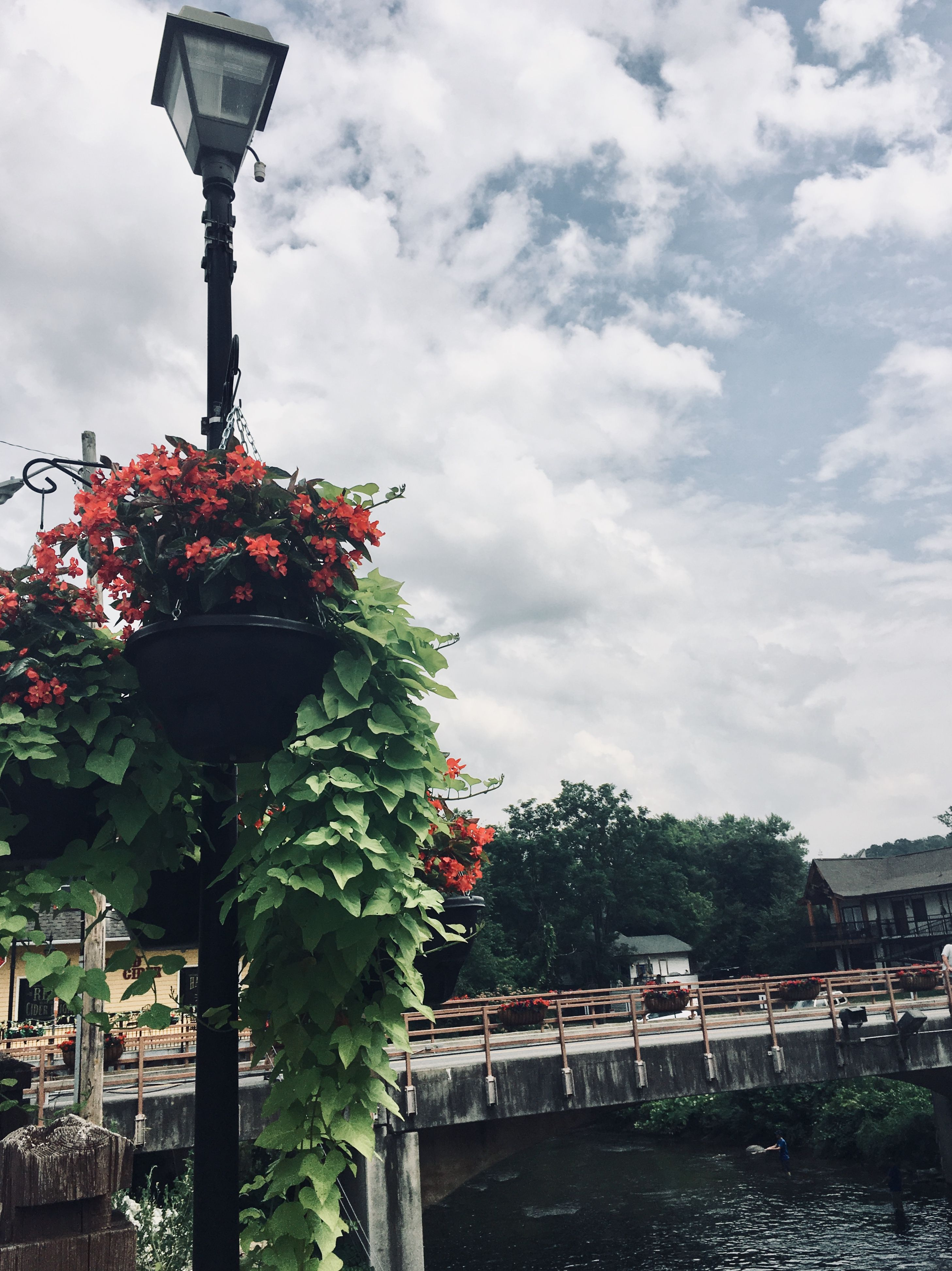 The Island Pigeon Forge Tennessee The Mill Downtown Phone Background Flowers Bridge Lamppost Light Bouquet Floral Pink Green Blue Skies
