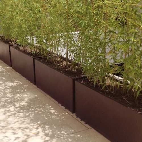 Jardineras macetas minimalistas de fibra de vidrio meue for Planta arbustos para jardineras