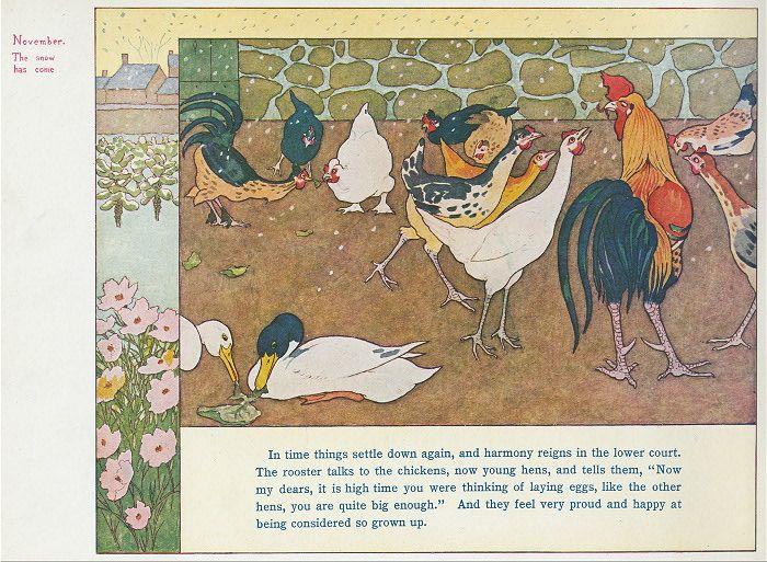from vintage book:  1910, Chicken World