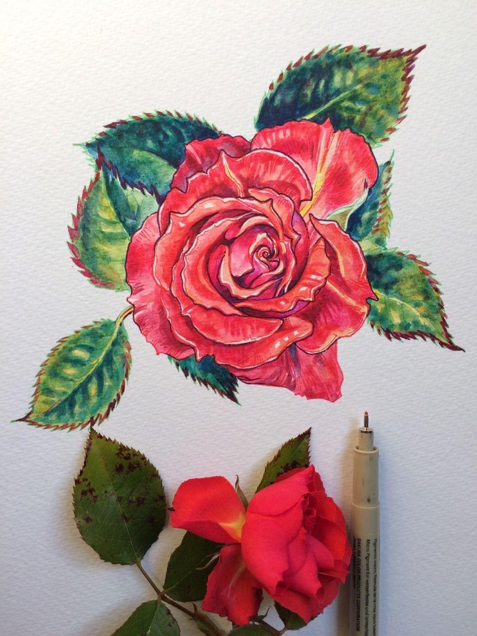 Noel Badges Pugh Art Wallpaper Colorful Flowers Art Forms