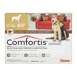 Comfortis Oral Flea Control Now Approved For Cats Flea Meds For Cats Flea Control For Cats Flea Meds
