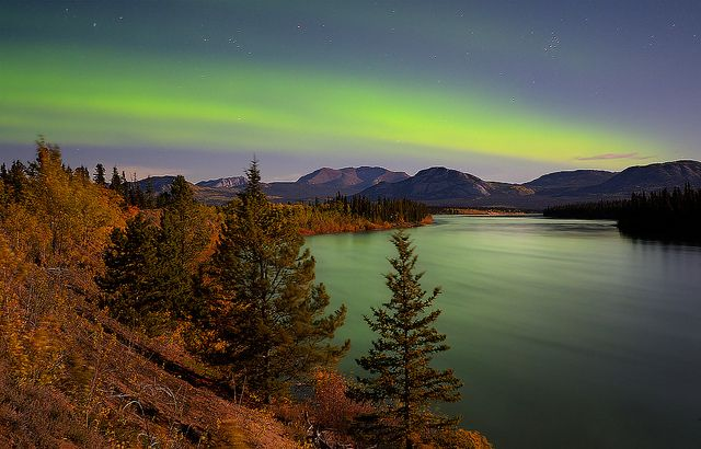 Autumn Colours on the Yukon River by kdee64, via Flickr