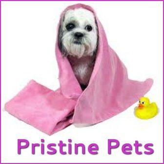Pristine Pets By Tina Dog Groomer Pet Grooming Pets Shih Tzu