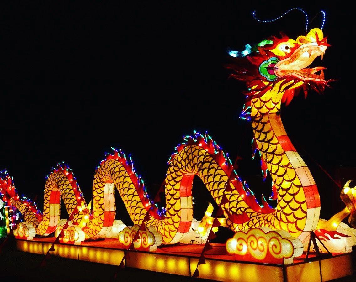 Happy Chinese New Year ChineseNewYear  Nederland