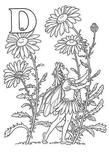 Fairy Alphabet Darcy May D