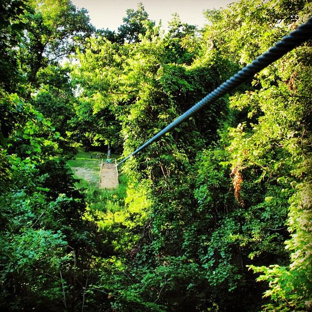 The View From One Of Our New Ziplines At Crevecoeurpark
