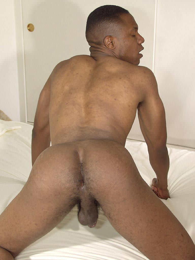 Black gay ebony sex