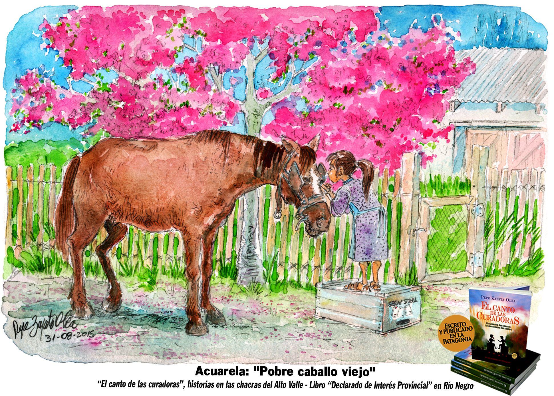 """Acuarela: """"Pobre caballo viejo"""" """"Rosendo se jubiló como cualquier otro peón, y el patrón quiso que se quedara en la chacra por respeto a sus años de duro trabajo. """"De peón a mascota"""", parecía pensar Rosendo, cada vez que le probaban la anteojera. Las arvejas y las habas plantadas en abril eran su pretal y la primavera su lomera. Pero las palabras dulces de la niña: perfumados pétalos rosados en sus orejas."""""""