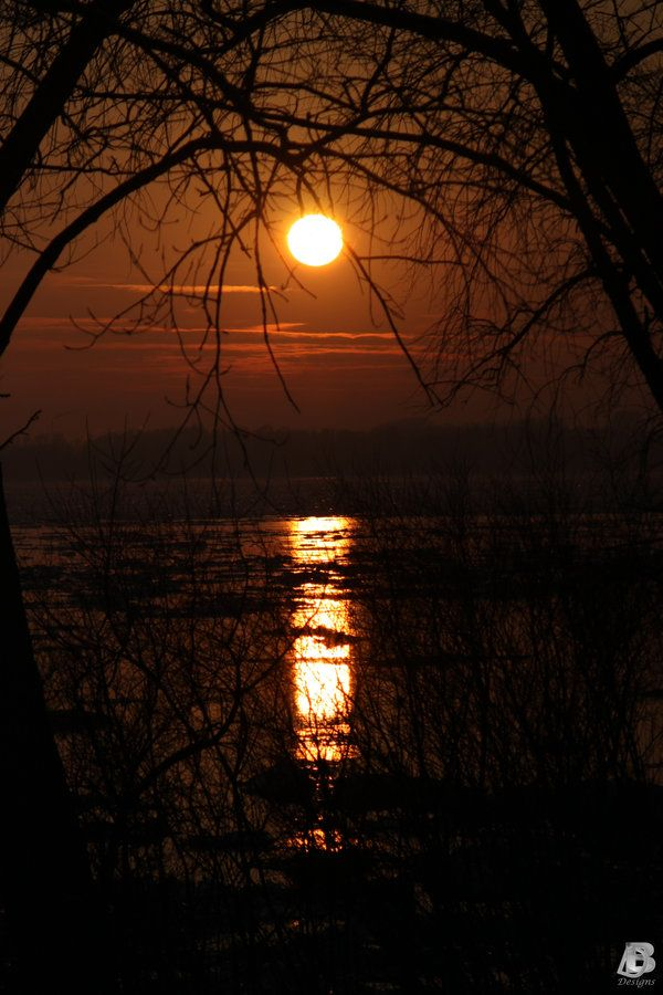 sunset_in_the_trees_by_indianrain-d35hy7u
