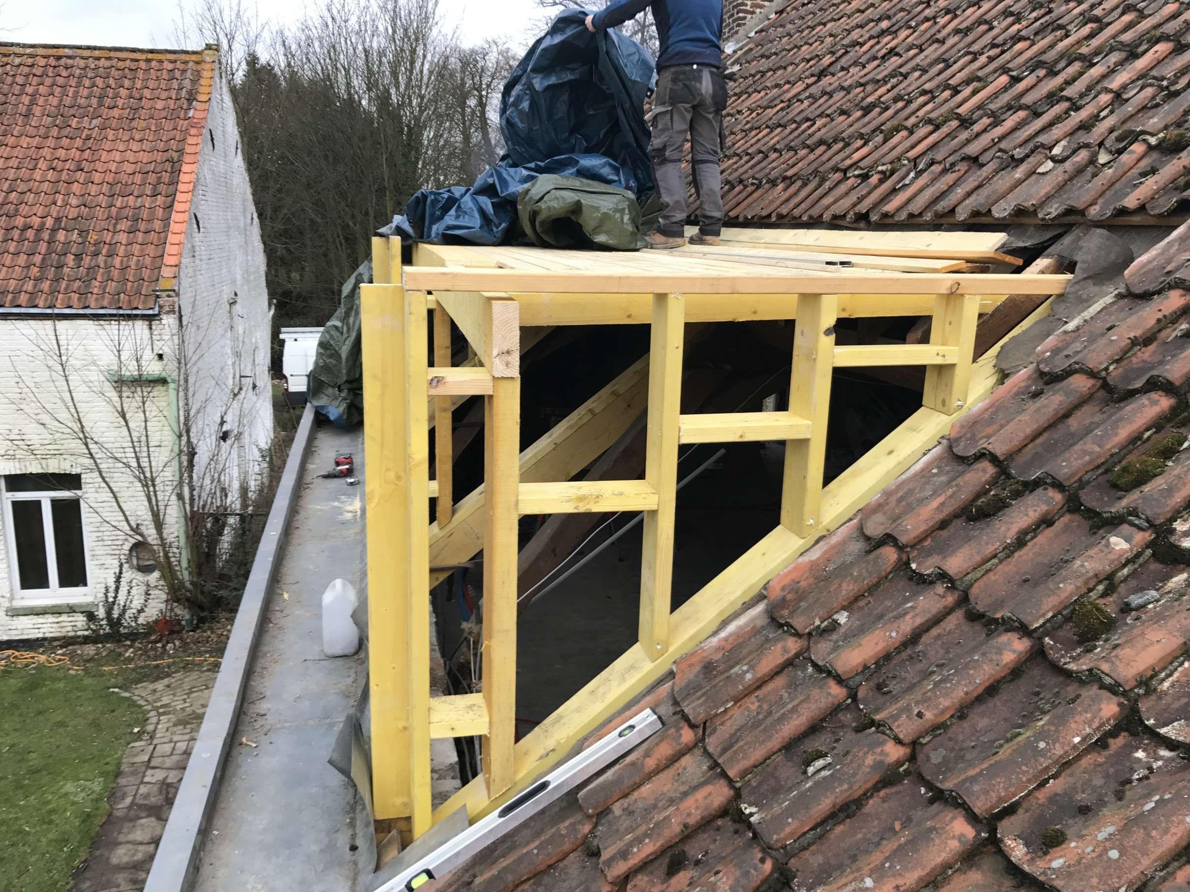 Chien Assis Sur Couverture Traditionnelle Quercynoise Maisons