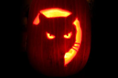 Halloween Pumpkin Carving Cat Patterns, Pumpkin Ca