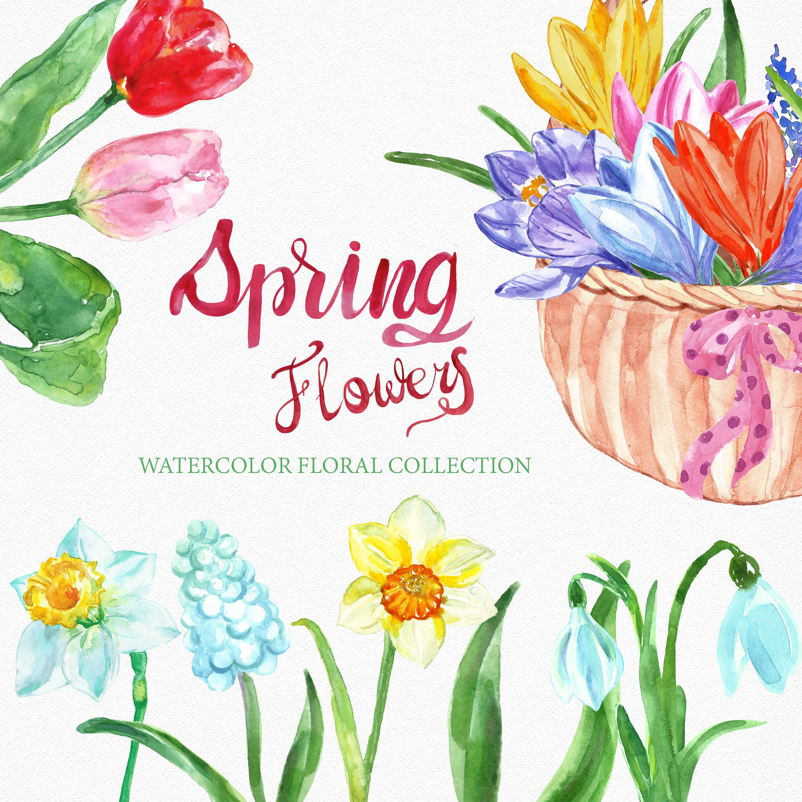 Spring Watercolor Flowers Clipart Floral Clip Art Png Digital