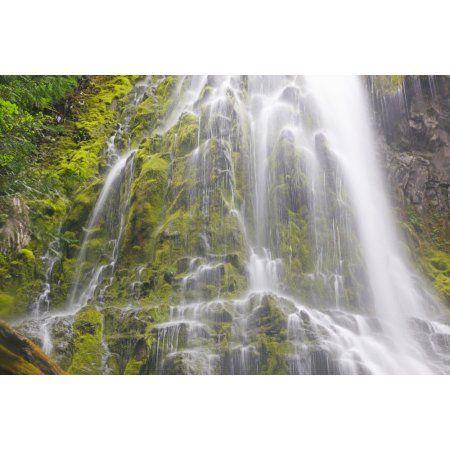 Proxy Falls In Willamette National Forest Oregon United States of America Canvas Art - Craig Tuttle Design Pics (19 x 12)