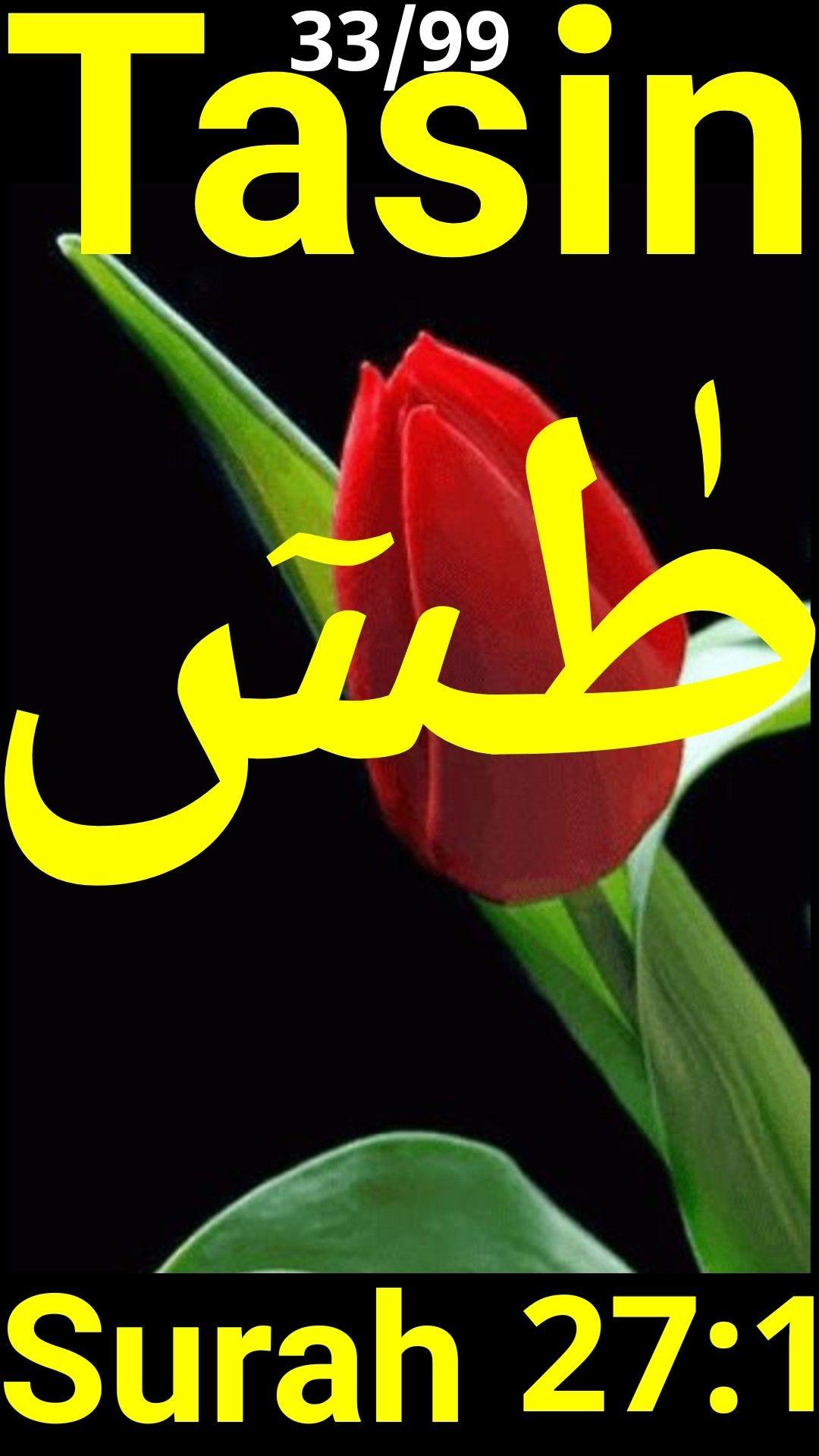 Rasool Nabi Explained Rasool Is An Islamic Word For Messenger While Nabi Is The Islamic As Well As The Hebrew Word Fo Hebrew Words Learn Hebrew Words