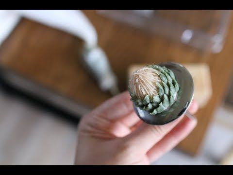 앙금플라워 프로테아 파이핑 (King Protea Korean flower cake decoration)