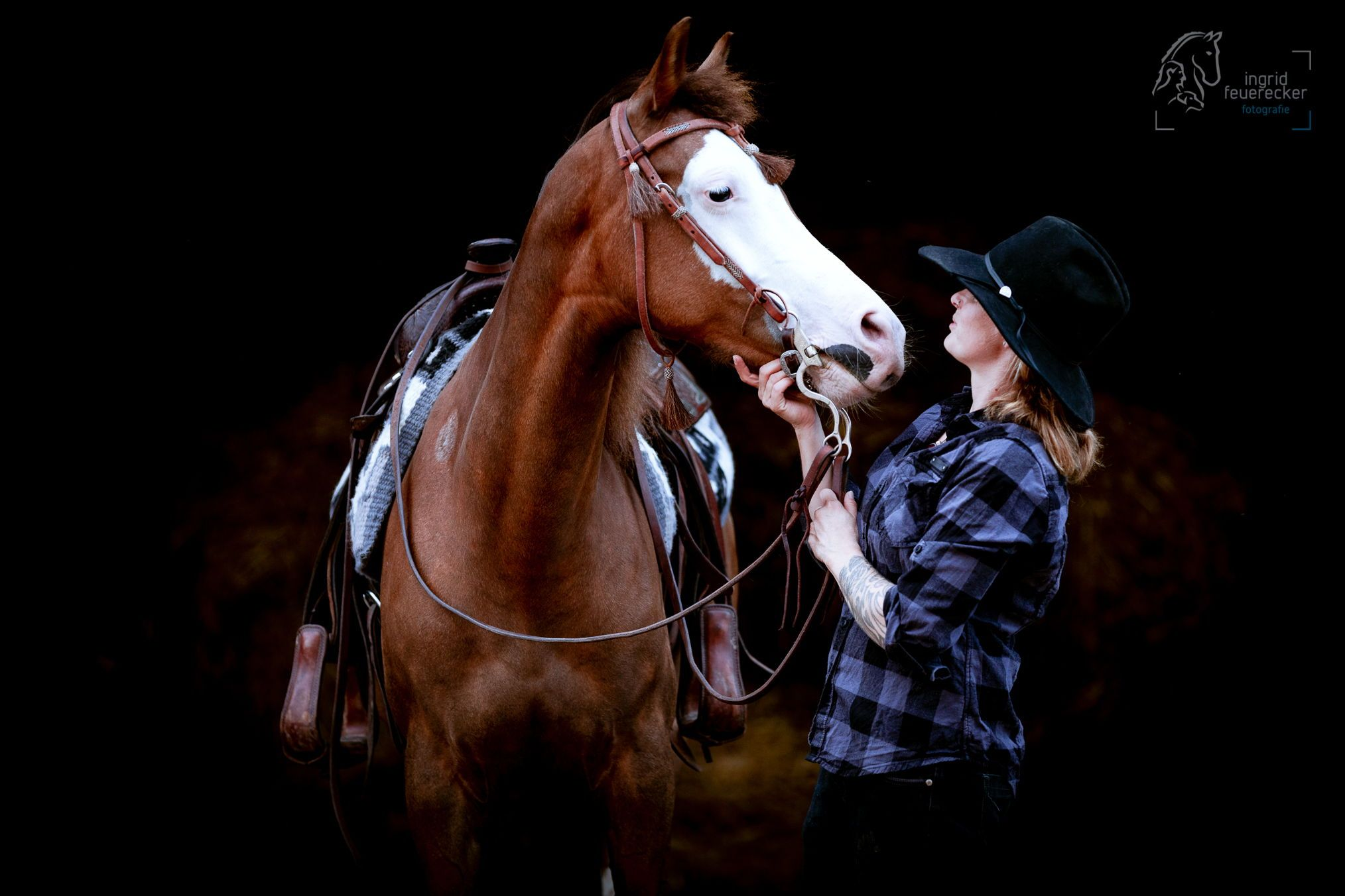 Ingrid Feuerecker Pferdefotografie Ingrid Feuerecker Hundefotografie Pferd Und Mensch Vor Schw Pferde Fotografie Pferde Madchen Fotografie Pferdefotografie