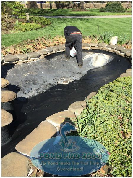 Concrete fish pond paint as important as pond check out for Concrete fish pond