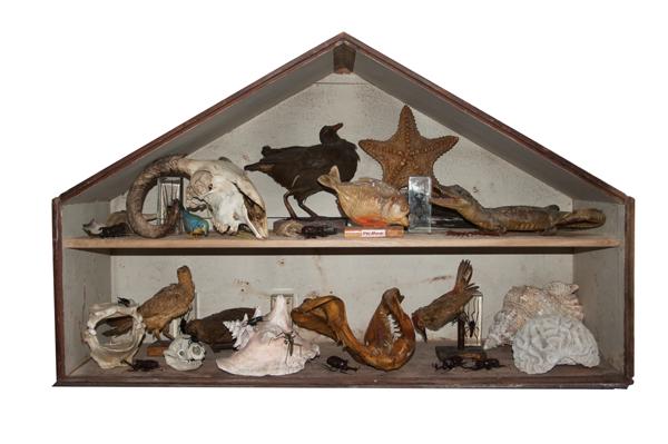 The Vintagexplorer office Cabinet of Curiosities.