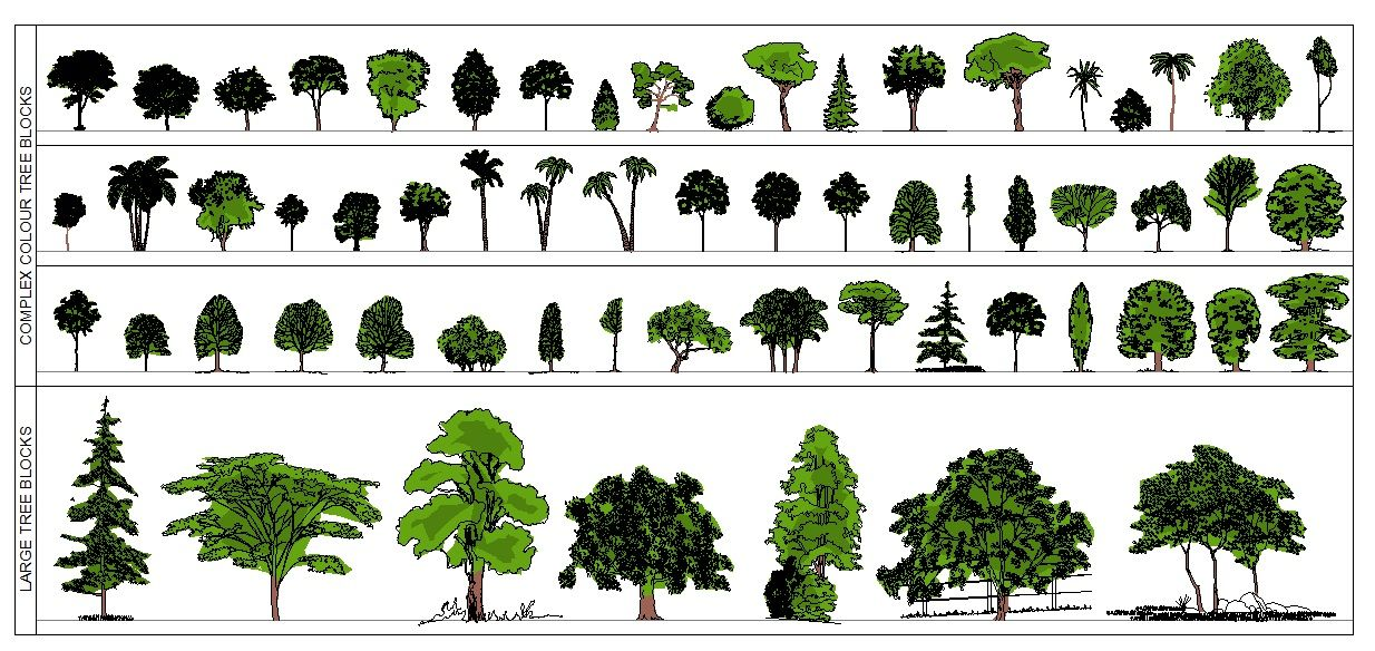 Check out these great colour Tree CAD Blocks at www